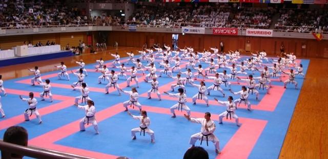 سبکهای کاراته - مدیر ذهن