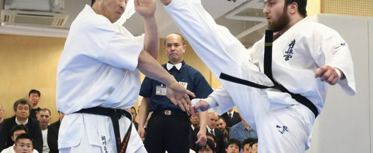 حرکات ایپون مبارزات کیوکوشین - مدیرذهن