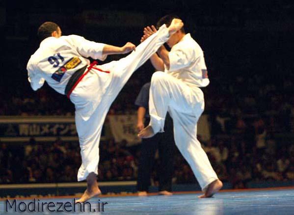 مسابقات جهانی 2014 کیوکوشین (بخش دوم) - مدیر ذهن