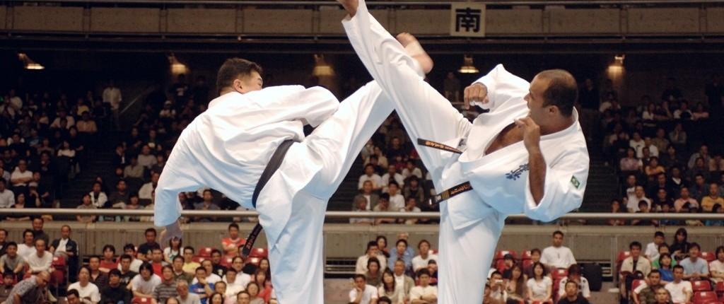 مسابقات جهانی 2014 کیوکوشین (بخش سوم) - مدیر ذهن
